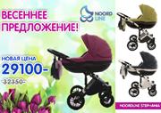 Детские универсальные польские коляски Noordline Stephania 2в1