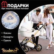 Акция на детские универсальные польские коляски Reindeer