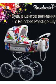 Детские универсальные польские коляски Reindeer Lily