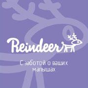 Детские универсальные польские коляски Reindeer